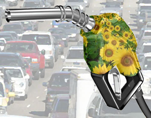 biodiesel pump with flowers